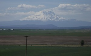 goldendale another mountain view